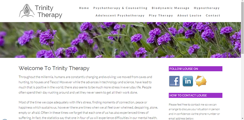 Psychotherapy & Counselling Website